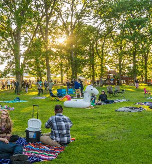 Harmony-Park-grassy-chill-zone